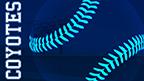Baseball Softball BG thumbnail